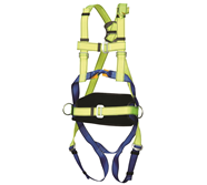 3 Point Harnesses