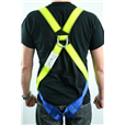 Harness And Shock Absorber Lanyard Kit