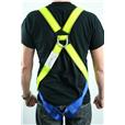Scaffolders Harness Set